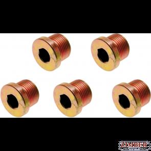 Пробки за картер M17x 1.5 mm 5 бр.(126-SM17) - BGS-PROFESSIONAL